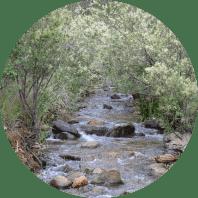 Monitoring environmental impacts